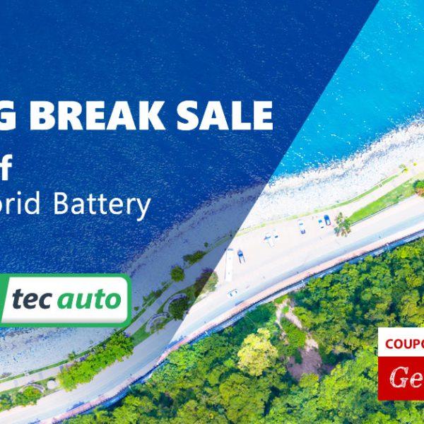 Spring Break Sale 2019 on Hybrid Batteries